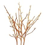 Orange Glitter Lighted Branches